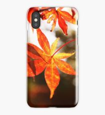 10 - A Maple for My Canadian iPhone Case/Skin