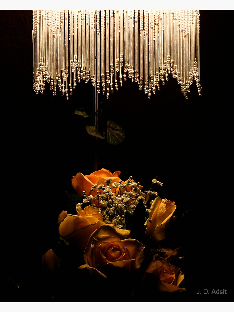 Light and Petals by adsitprojectpro