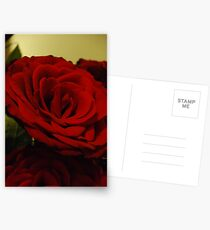 The Colour red Postcards