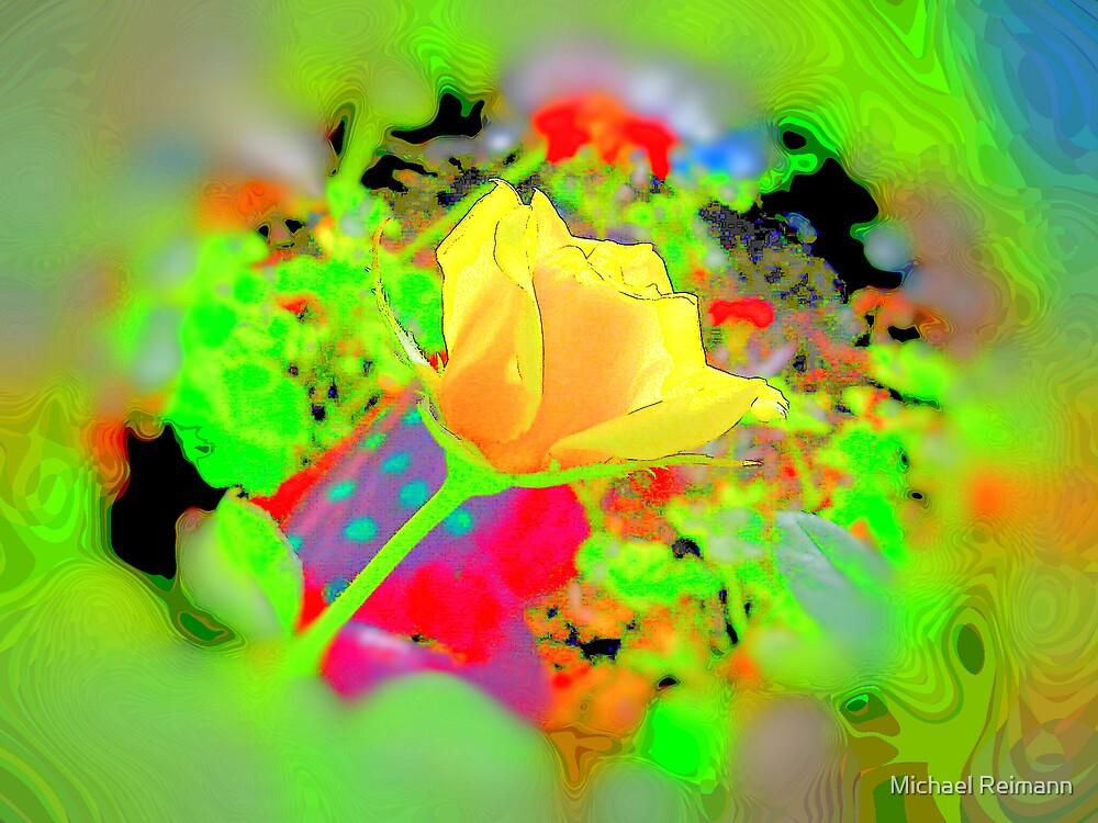 That 70's Flower by Michael Reimann