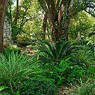 Secret Garden by Michael Reimann