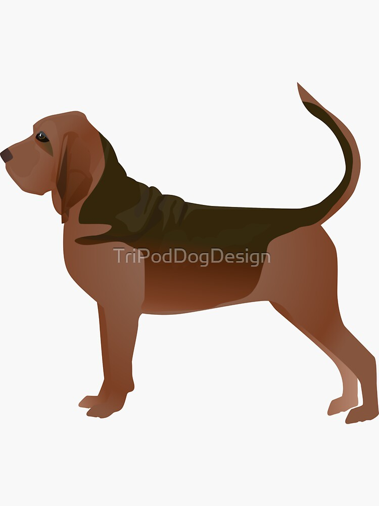 Bloodhound Dog Breed Illustration Silhouette by TriPodDogDesign