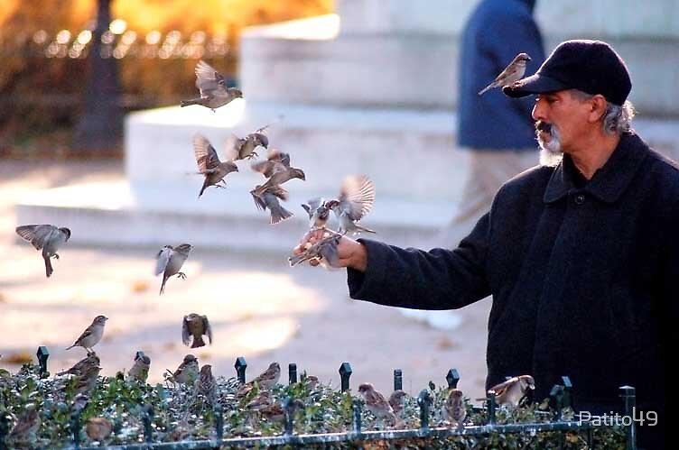 The Birdman of Paris by Patito49