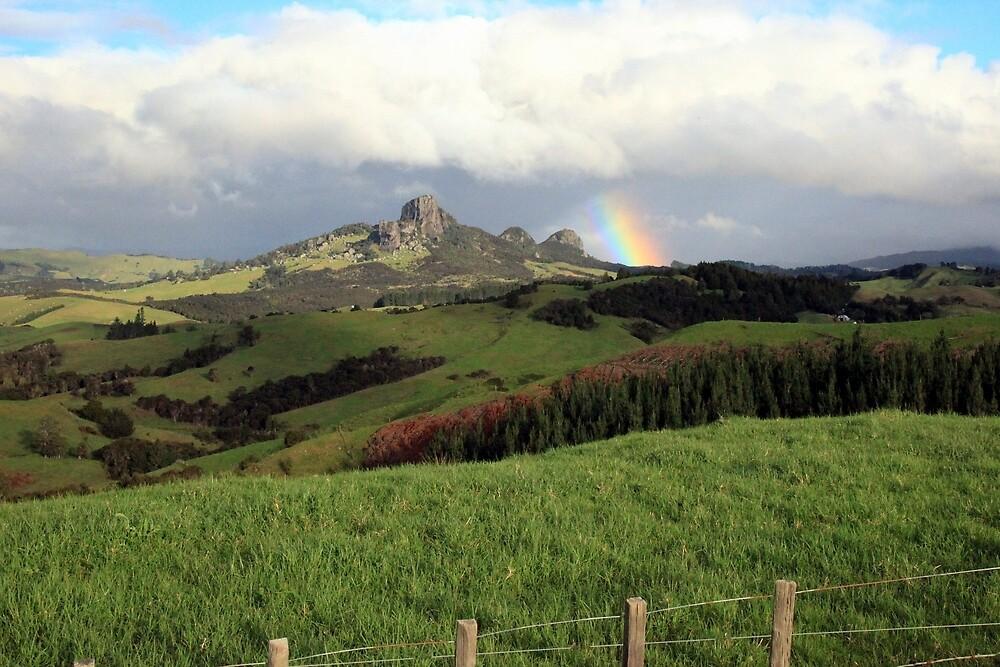 Rainbow over Taratara-Whangaroa by Tony Foster