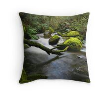 Water Log Throw Pillow