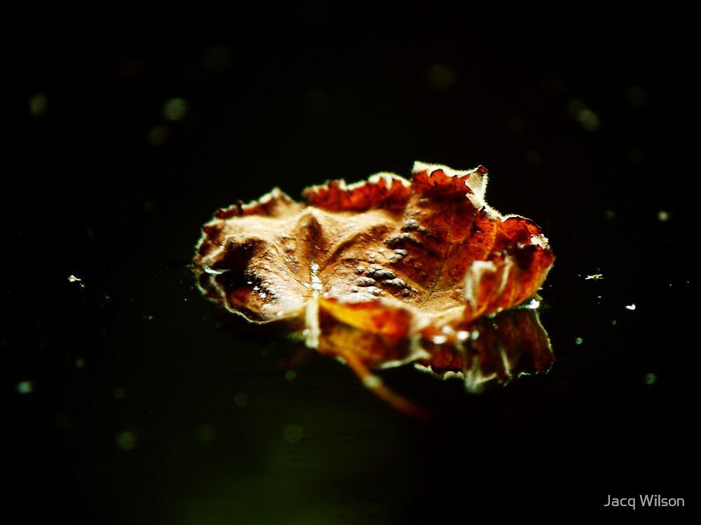 Falling down....... by Jacq Wilson