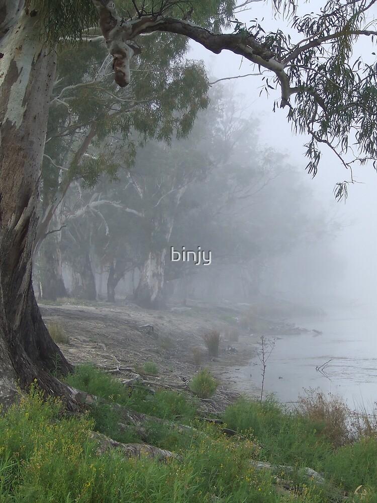 River Fog by binjy