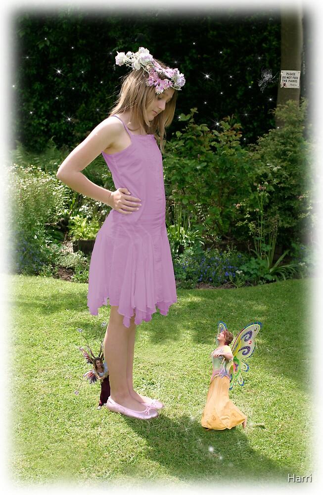 Chloe & The Naughty Fairy by Harri
