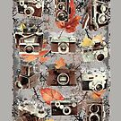 Vintage cameras ( Autumn ) by lab80