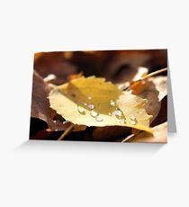 Fall Droplets on a Yellow Poplar Leaf Greeting Card