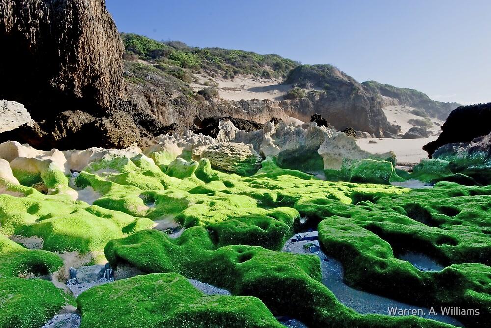 Green Rocks by Warren. A. Williams