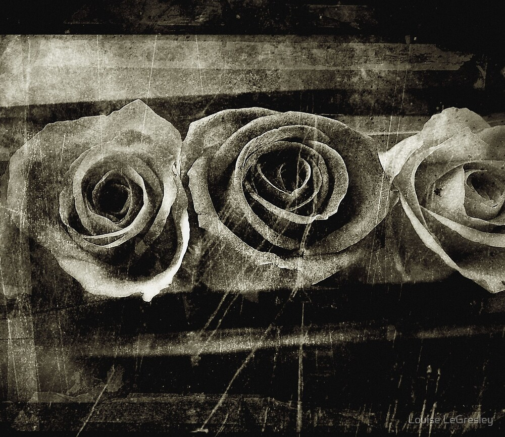 Three roses...  by Louise LeGresley