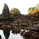 Treasure Cove Tide Pools 05 by IreKire