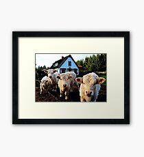 """We ain't no lambs, man."" Framed Print"