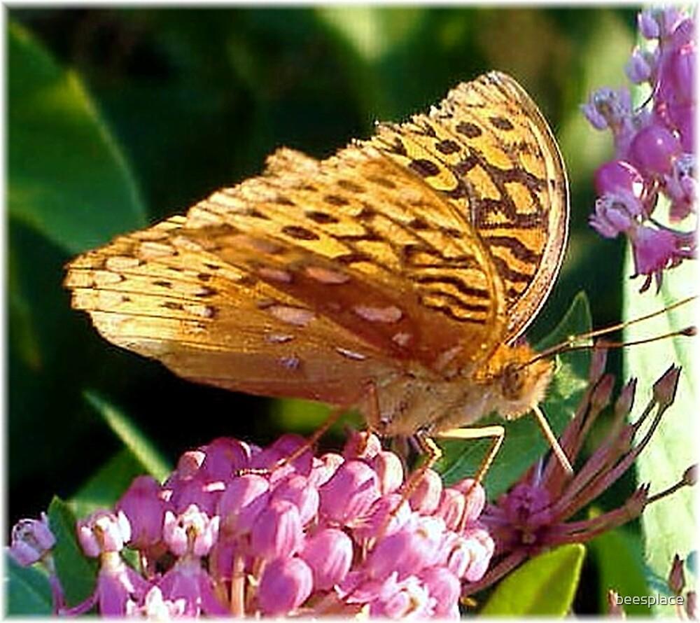 Flutter Away by beesplace
