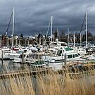 Stormy Skies Over Squalicum Harbor by Jim Stiles