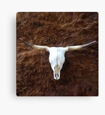 Highland cowhide and skull | Texture #home #lifestyle Canvas Print