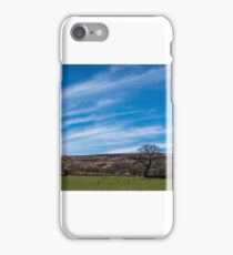 Landscape 1 iPhone Case/Skin