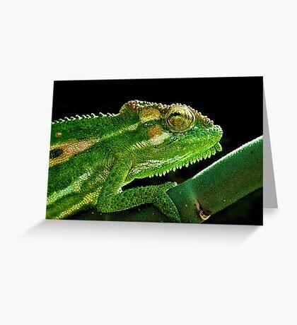 Cape Dwarf Chameleon Greeting Card