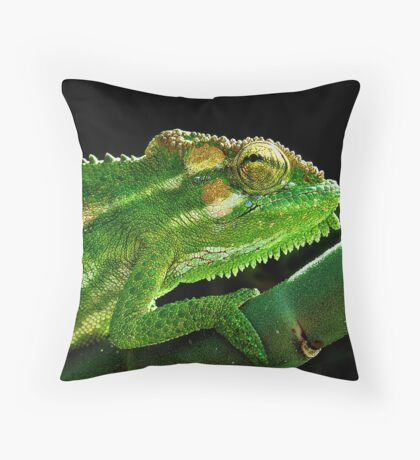 Cape Dwarf Chameleon Throw Pillow