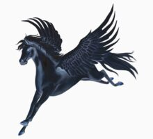 Black Pegasus Flying