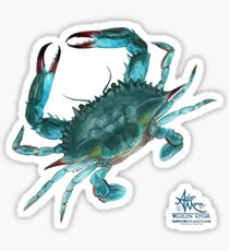 Blue Crab ~ Watercolor Painting by Amber Marine Sticker