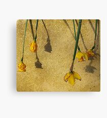 And We All Fall Down Canvas Print