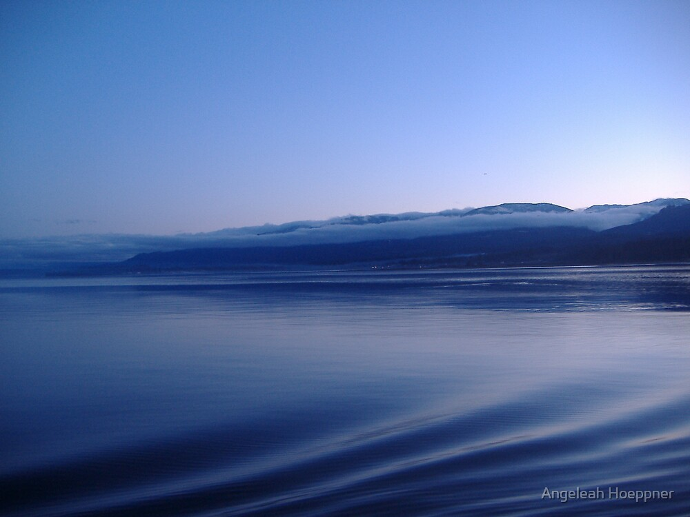Shades of Blue by Angeleah Hoeppner