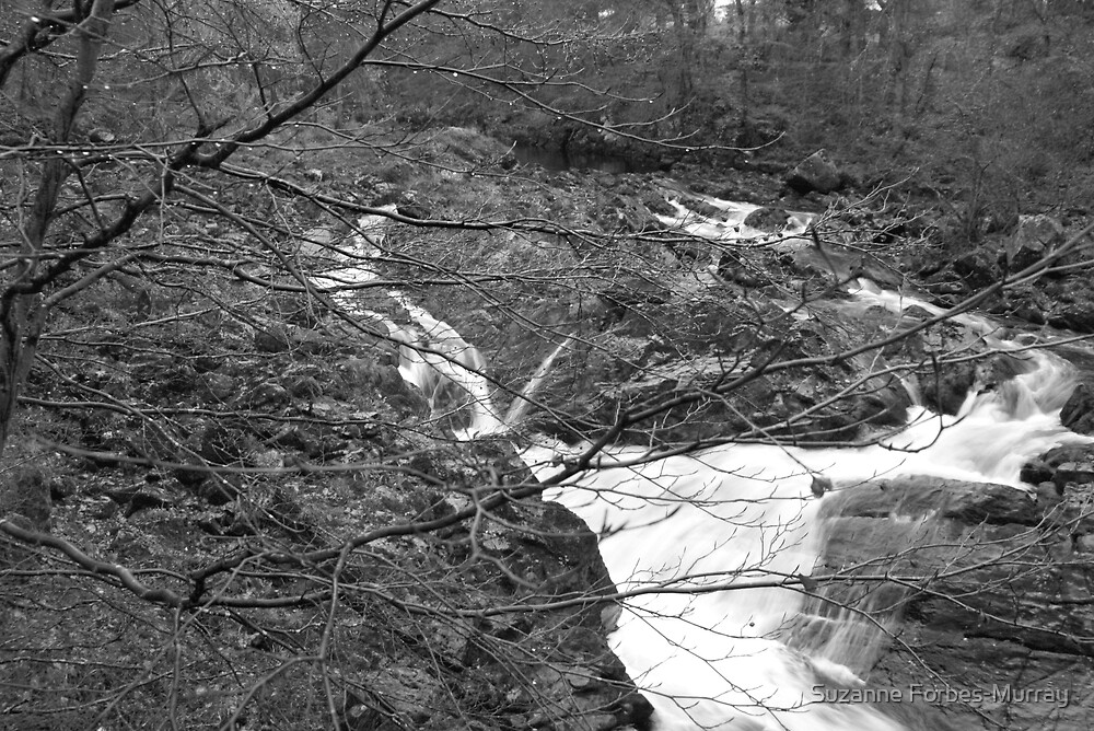 River Feaugh in B&W by Suzanne Forbes-Murray