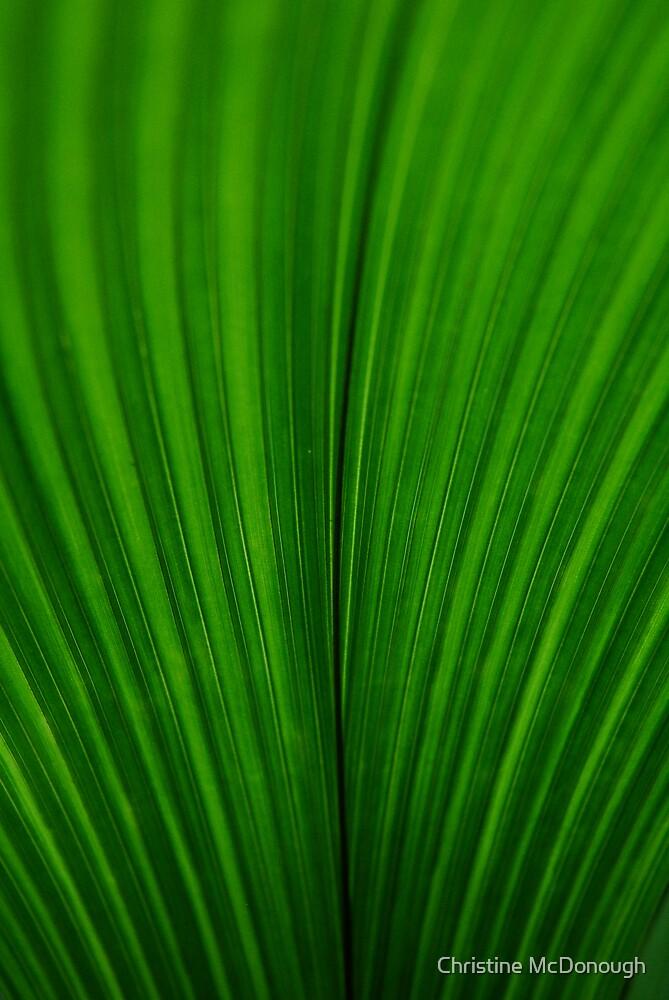 contour feather by Christine McDonough