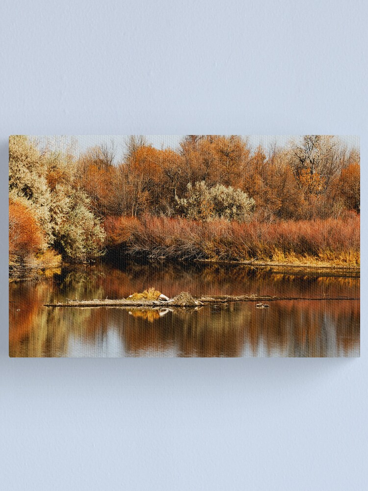 Alternate view of Like Water for Autumn Canvas Print
