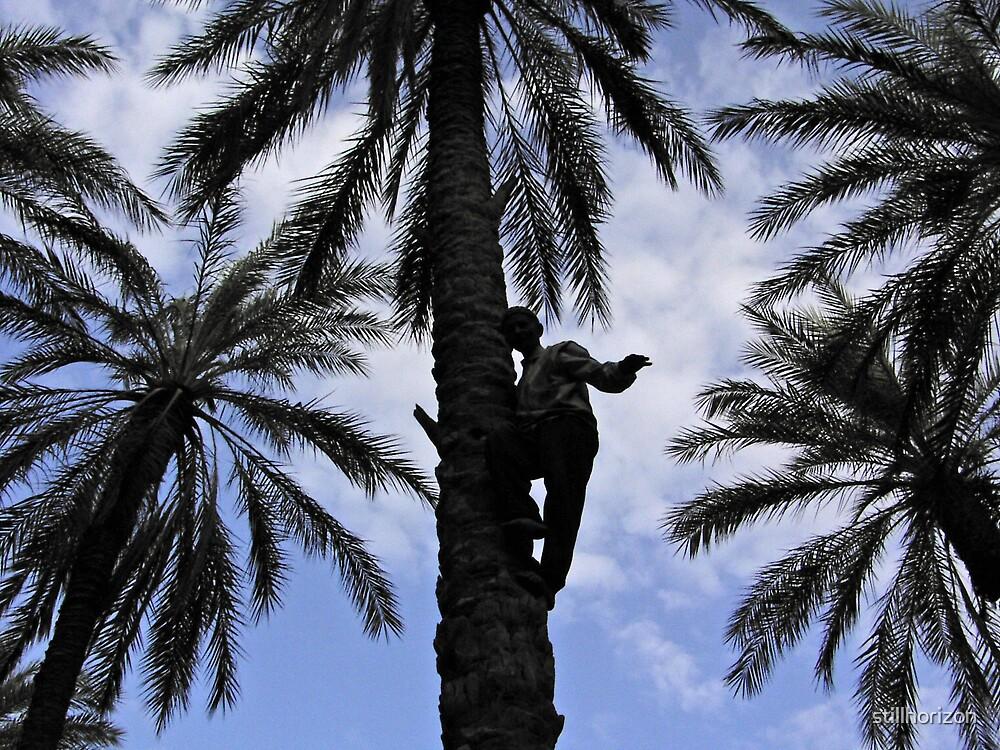 Tree Picker by stillhorizon
