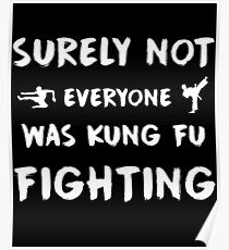 Surely Not everyone Was kung fu fighting Poster