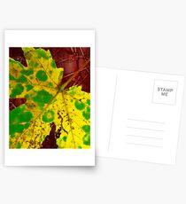 yellow leaf Postcards