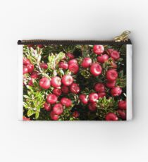Cheeseberry on Mount Rogoona  Studio Pouch