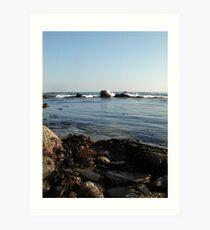 Seaweed&Rocks Art Print