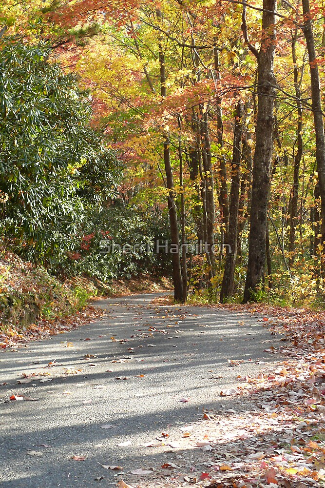October Road by Sherri Hamilton