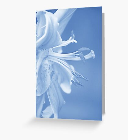 Lily in Blue Greeting Card