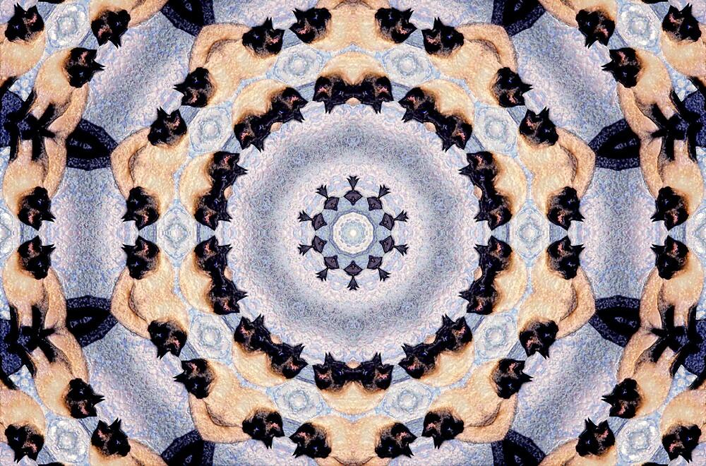 Kaleidoscope Siamese Cats by nikspix