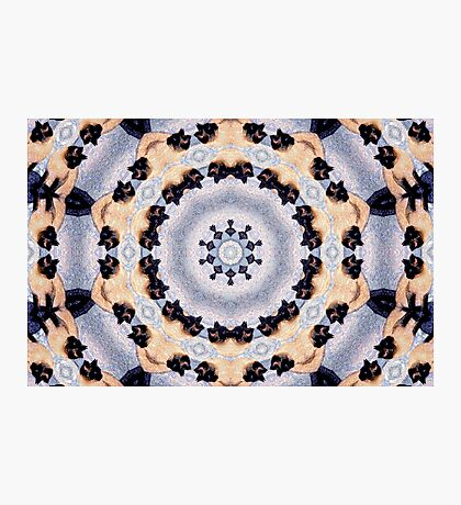 Kaleidoscope Siamese Cats Photographic Print