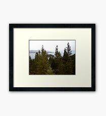 Island on Flathead Lake Framed Print