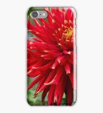 Monet's Garden #19 - France iPhone Case/Skin