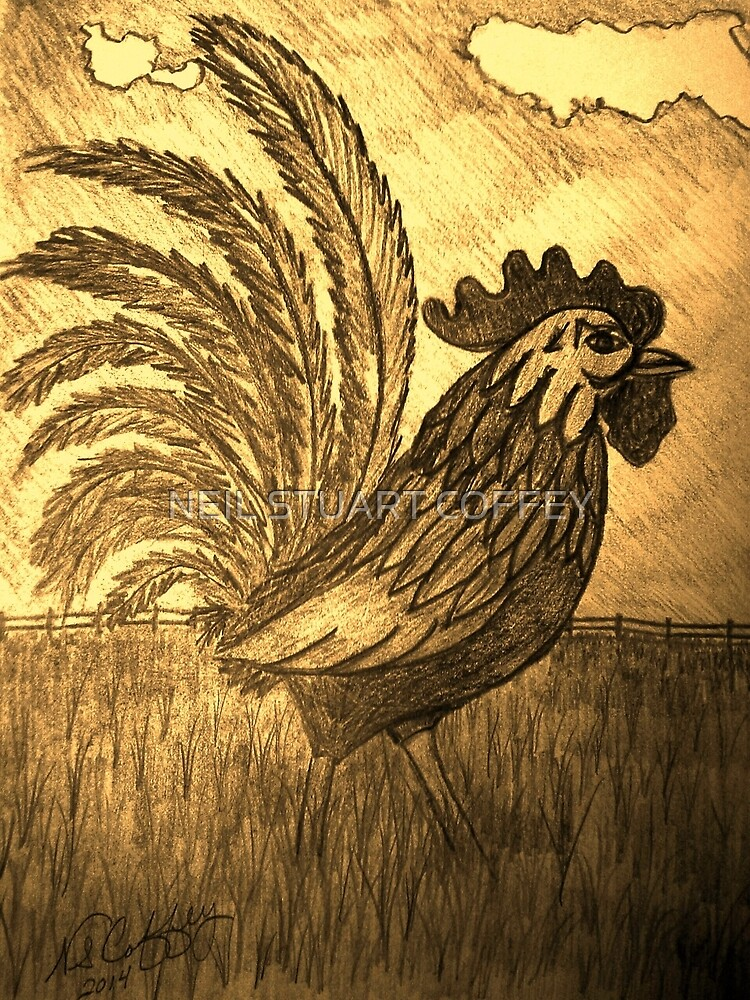 ROOSTER IN THE GRASS by NEIL STUART COFFEY