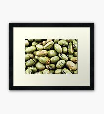 An extreme macro image of dried soybeans Framed Print