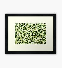 An extreme macro image of dried split peas Framed Print