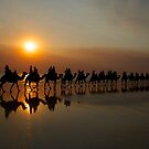Camels at Sunset on Cable Beach, Broome - Western Australia by Extraordinary Light