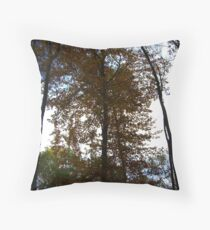 Turning Leafs Throw Pillow