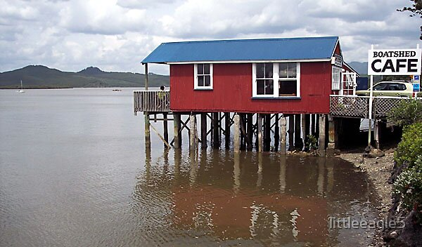 Boat shed North Island New Zealand by littleeagle5