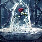 Enchanted Rose by estebankeller