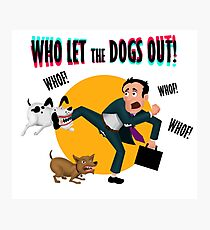 Who let the dogs out! Photographic Print